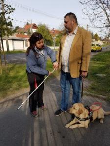 kép: egy kiképző épp megmutatja a helyes fehérbot tartását egy leendő vakvezető kutya tulajdonosnak
