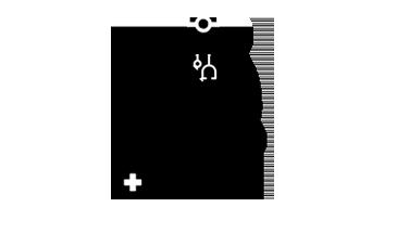 kép: állatorvosi ellátás ikon