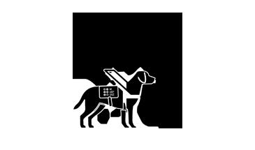kép: szakmai támogatás ikon