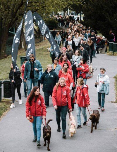 A rendezvényen megjelent tömeg sétál vakvezető kutyákkal és Loyalty is Royalty zászlókkal.