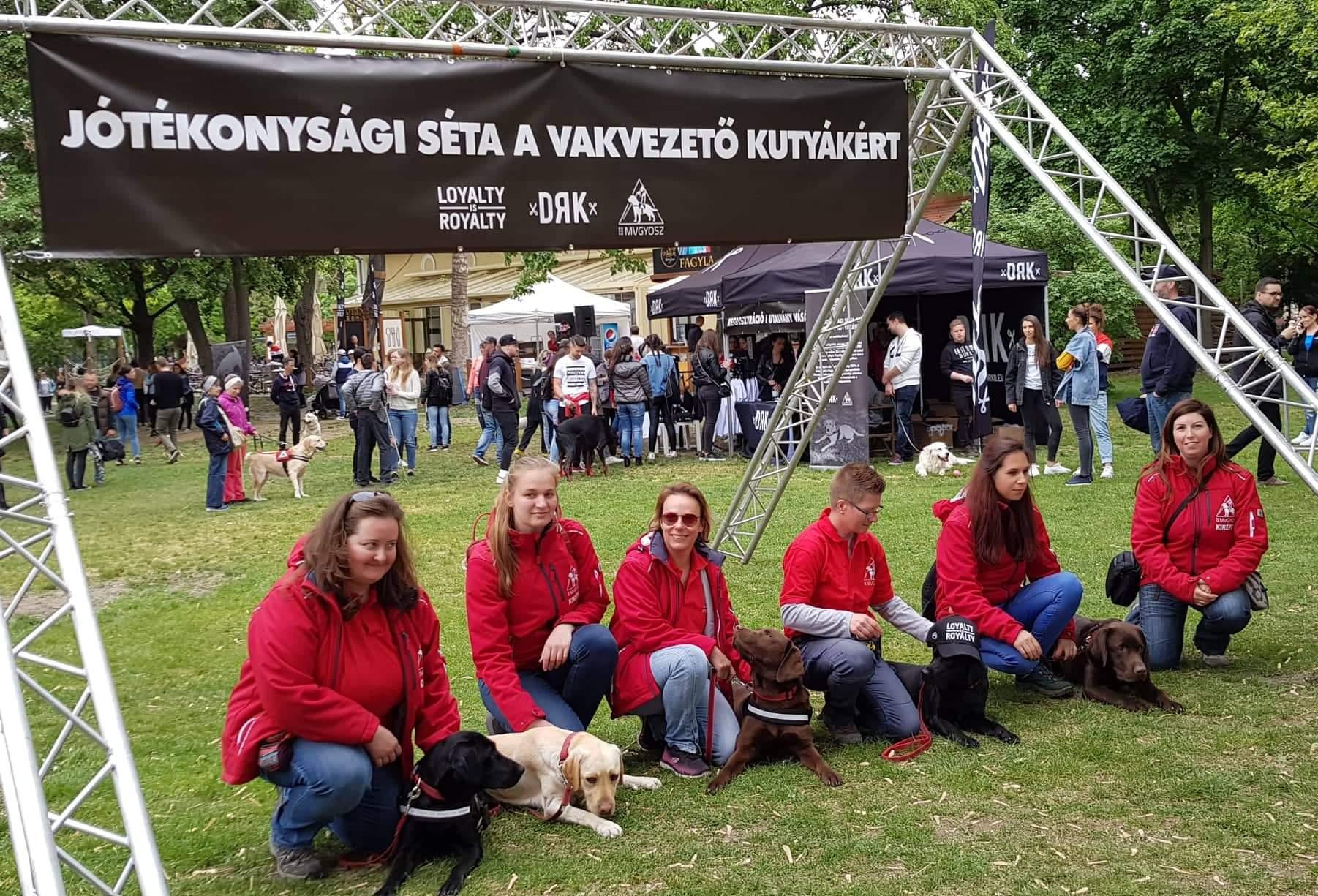 Kiképzők gugolnak kutyáikkal egy kifeszített molinó alatt, melyen a jótékonysági séta felirat olvasható