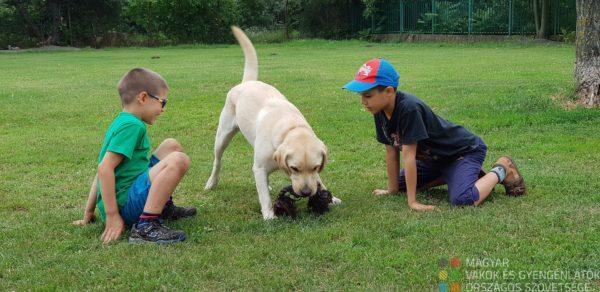 Gyerekek játszanak egy labrador kutyussal