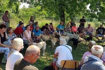 Gazdik egy nagy kört alkotva ülnek, a kutyusok addig a gazdiknál pihennek.