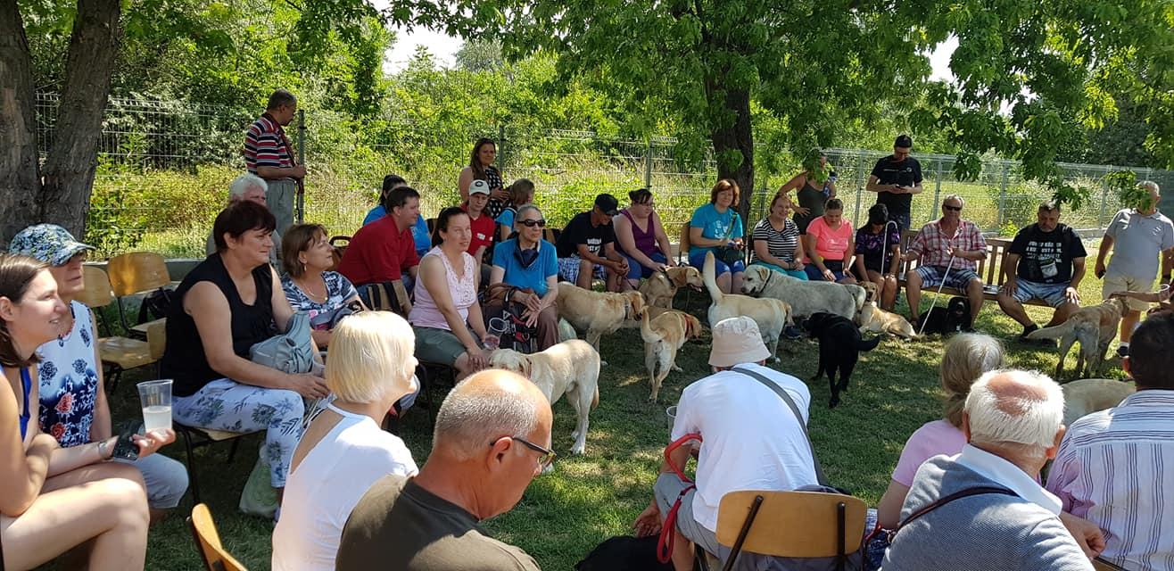 Gazdik egy nagy kört alkotva ülnek, a kutyusok szabadon a körközepén mászkálnak